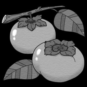 柿(白黒)
