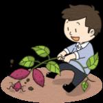 芋堀りをする男の子のイラスト(カラー版)