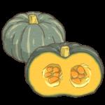 かぼちゃ(南瓜)のイラスト(カラー版)