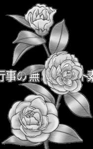 サザンカのイラスト(白黒版)