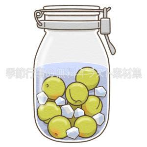 梅のシロップ漬けのイラスト