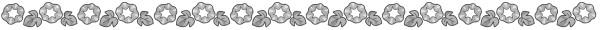 朝顔の飾り罫線(白黒版)
