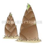 タケノコ(竹の子)のイラスト(カラー版)