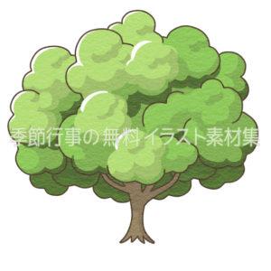 大きな木のイラスト