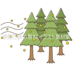 花粉を飛ばす杉の木のイラスト(カラー版)