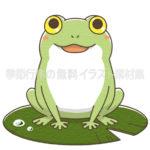 カエル(蛙)のイラスト(カラー版)