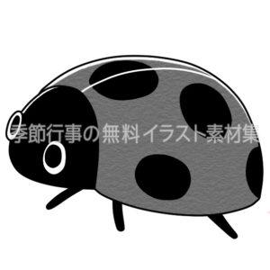 テントウムシのイラスト(白黒版)
