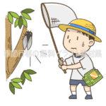 虫取りをする子供のイラスト(カラー版)