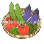 夏野菜のイラスト(カラー版)