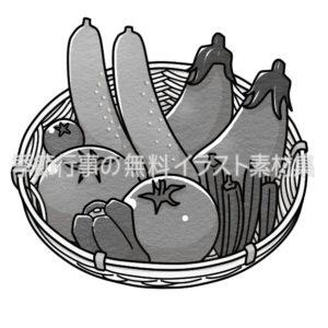 夏野菜のイラスト(白黒版)