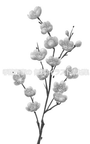 梅の花のイラスト(白黒版)