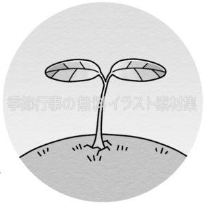 双葉の新芽のイラスト(白黒版)