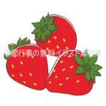 イチゴ(苺)のイラスト(カラー版)
